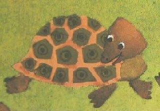 la tartaruga – feste e ricorrenze