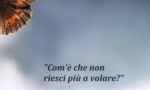 Venerdì a Cameriano tributo fotografico a Fabrizio De Andrè