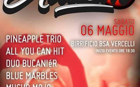 """""""Rock for autism"""", evento benefico il 6 maggio a Vercelli"""