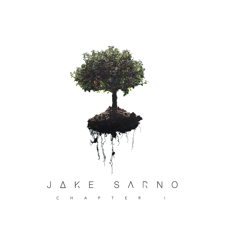 Jake sarno