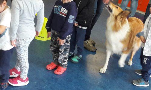 Cora, un'amica speciale in visita alla scuola dell'infanzia Elve