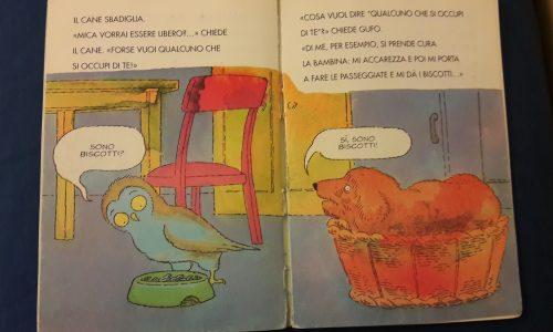 """""""C'è un gufo nel camino"""", un'avventura curiosa e coinvolgente per i bambini della scuola dell'infanzia Elve"""